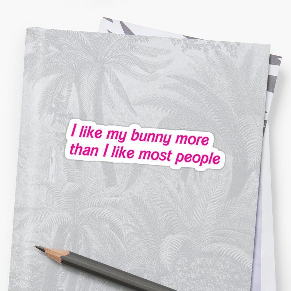 I like my bunny more by johannabaker
