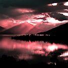 Te Anau. South Island, New Zealand  by Ralph de Zilva