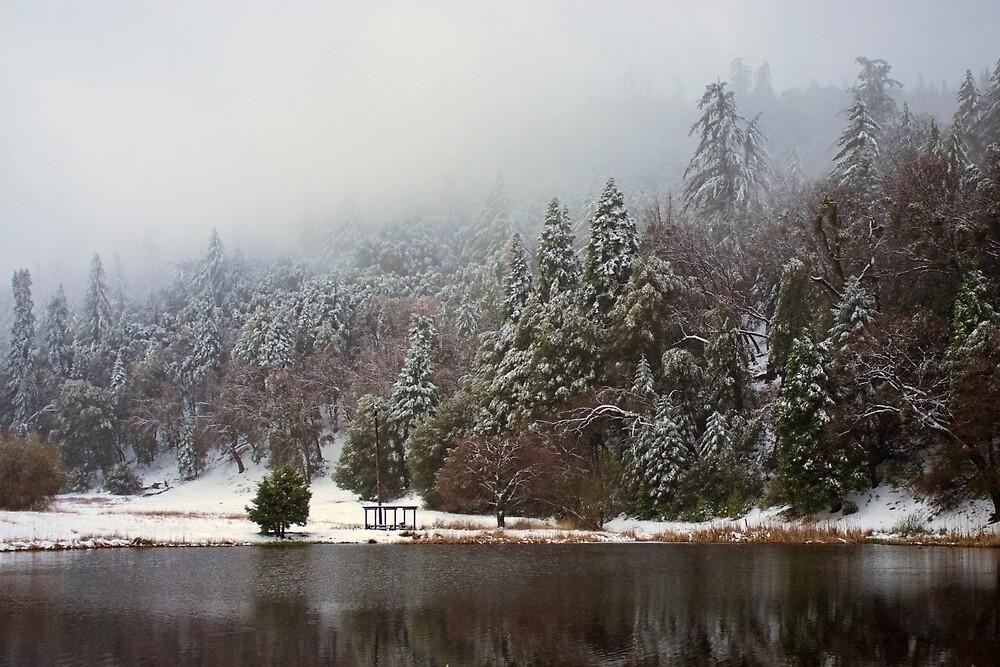 Winter Lake by Hugh Smith