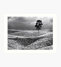 Field of Saddle Road Dreams 2 Art Print