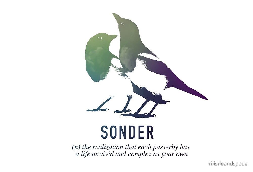 Sonder by thistleandspade