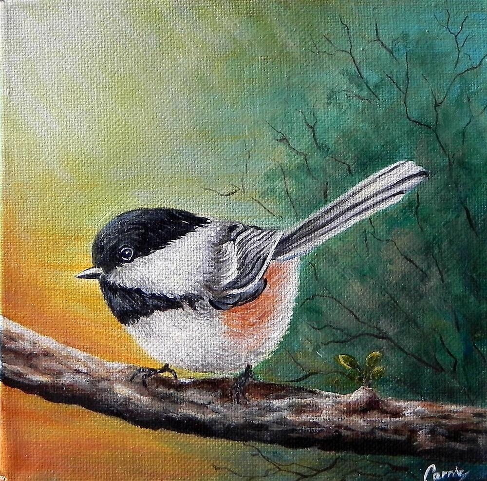 Chickadee Bird Wildlife Nature by Carrie Paquette