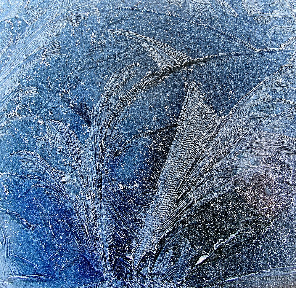 Morning Frost On a Car Windshield South Wales UK. by Andrew Nawroski