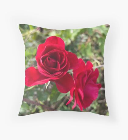 Field rose  Throw Pillow