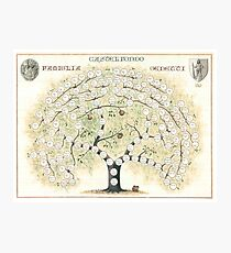 Original Genetti Family Tree Photographic Print