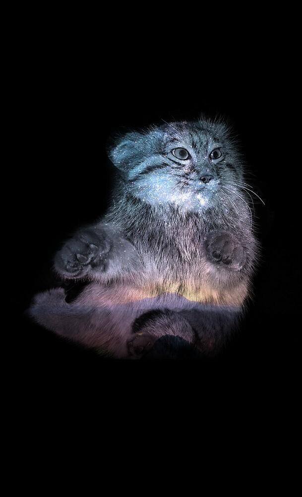 Majestic Munchkin Cat Double Exposure by JohnnRosh