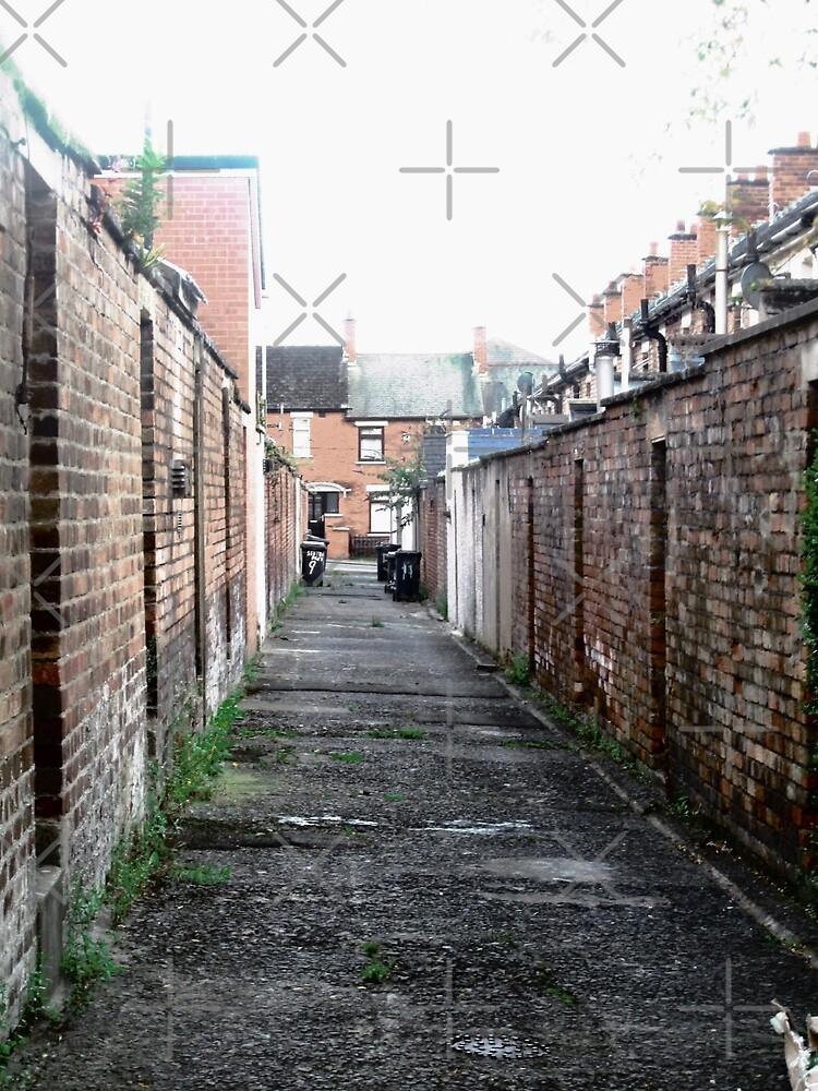 Belfast Alley. Belfast, Northern Ireland by Shulie1