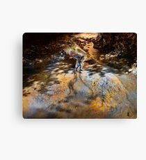 Falcon River Healing  Canvas Print