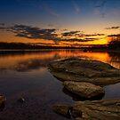 Twilight Fires by Yelena Rozov