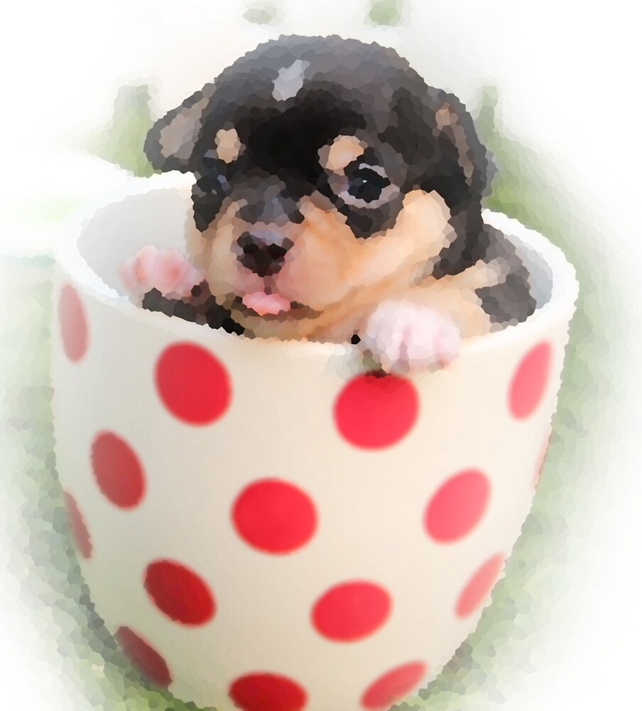 Dog in a cup by Angel ..