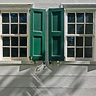 Two Colonial Windows by cclaude