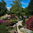 Merry Garth Garden - Mt Wilson by Ian English