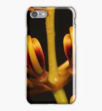 Grevillea robusta iPhone Case/Skin