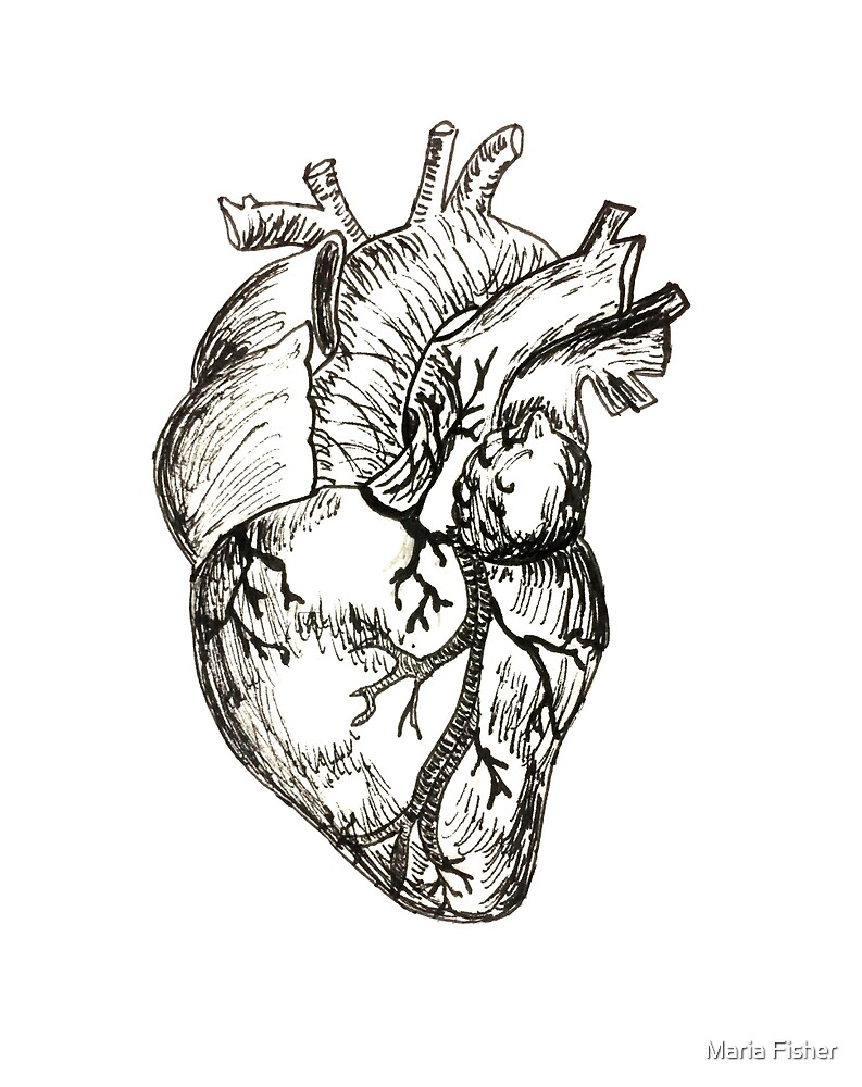Realistic Heart by Maria Fisher