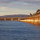 Golden Wharf, Purple Ranges by Bowen Bowie-Woodham