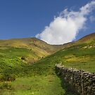 Blencathra - start of climb  by DARREL NEAVES