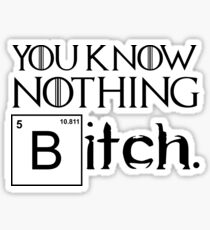 You Know Nothing Bitch Sticker