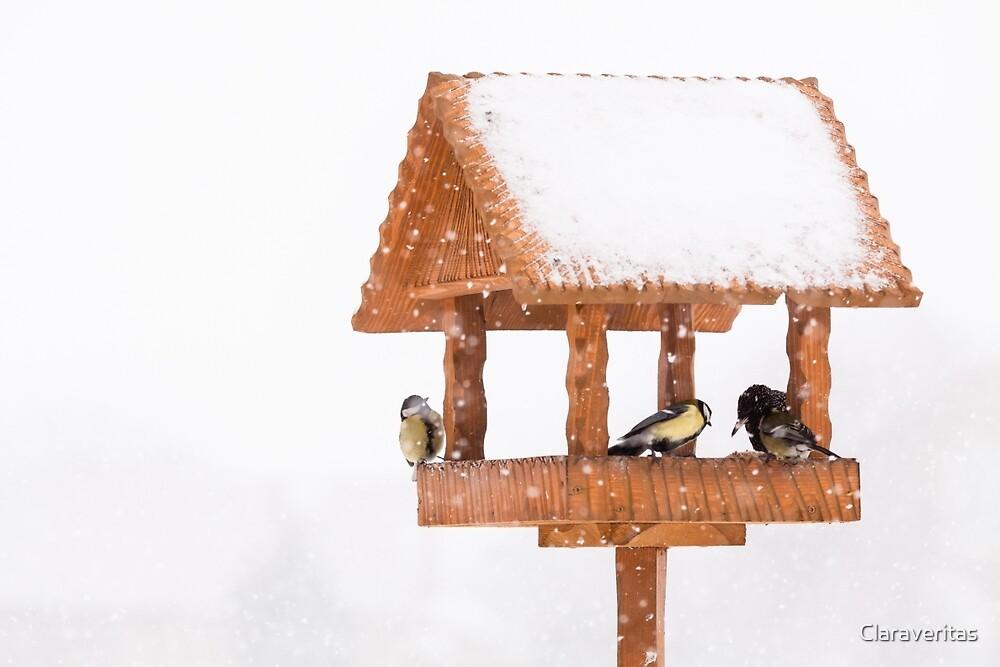 birdhouse by Artur Mroszczyk