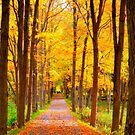 Full Flavor of Fall by Brian Gaynor
