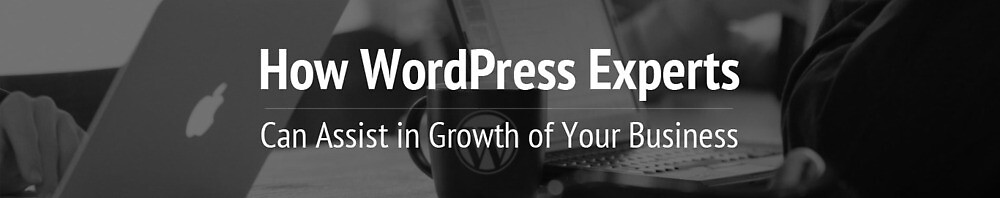 How WordPress Experts Can Assist in Growth of Your Business? by glorywebs