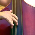 Pluck those strings by patjila