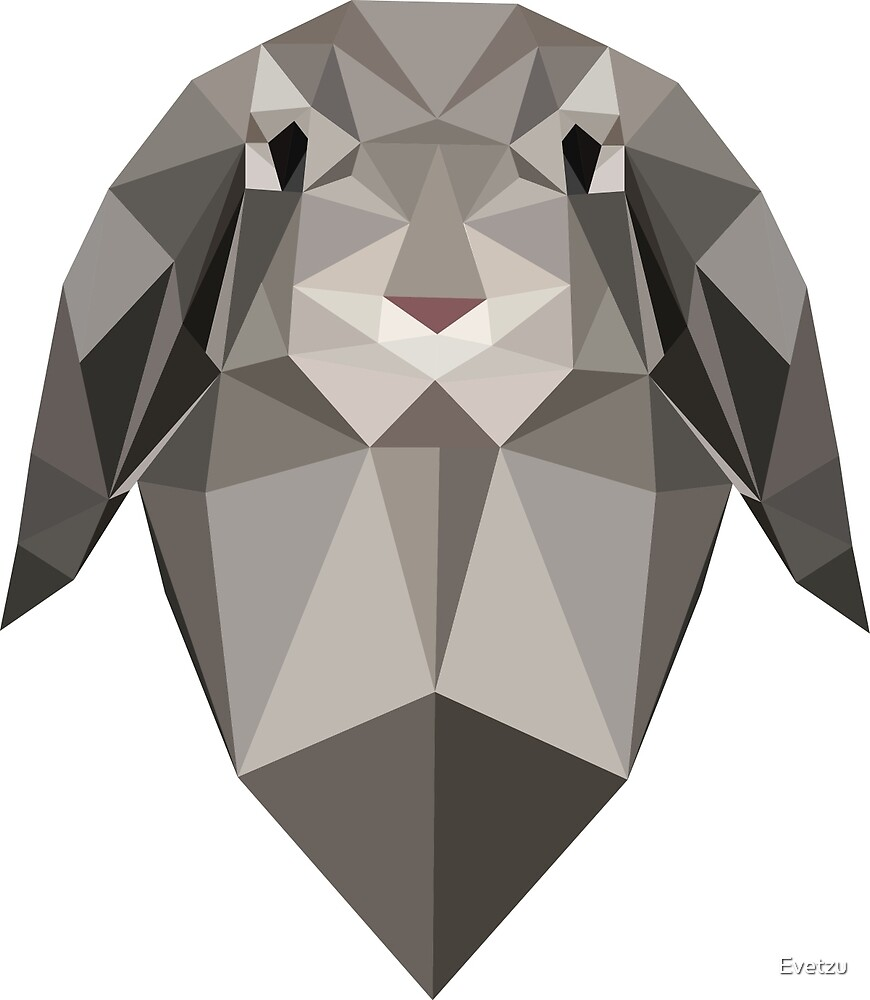 Bunny by Evetzu