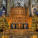Bristol Cathedral @ Christmas by Kevin Cotterell