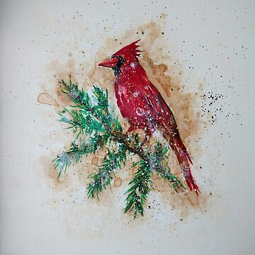 Winter Cardinal by Ambrosia