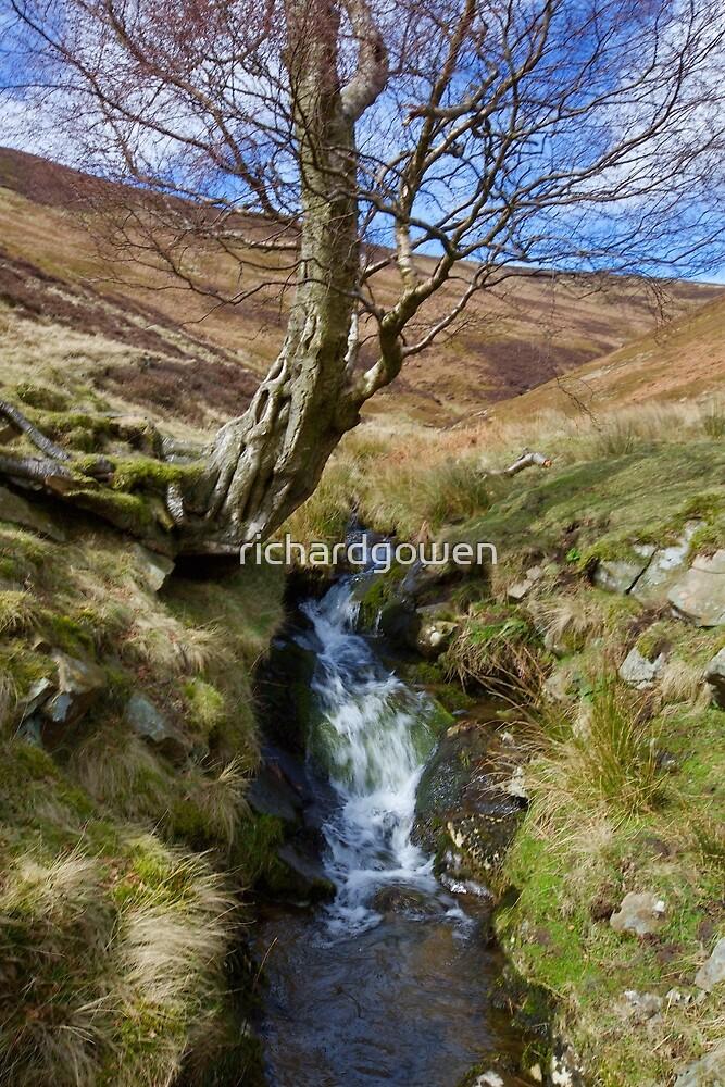 Derbyshire Waterfall. by richardgowen