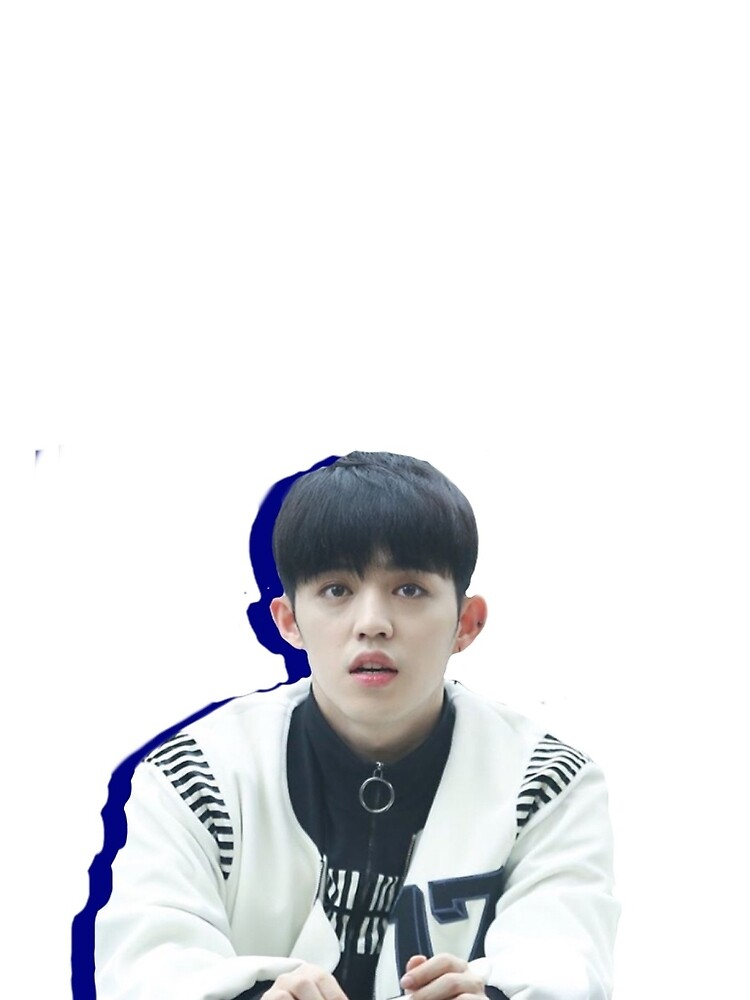 Seventeen S.Coups by Lilyniki