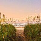 Beach Sunrise by Amy Jackson