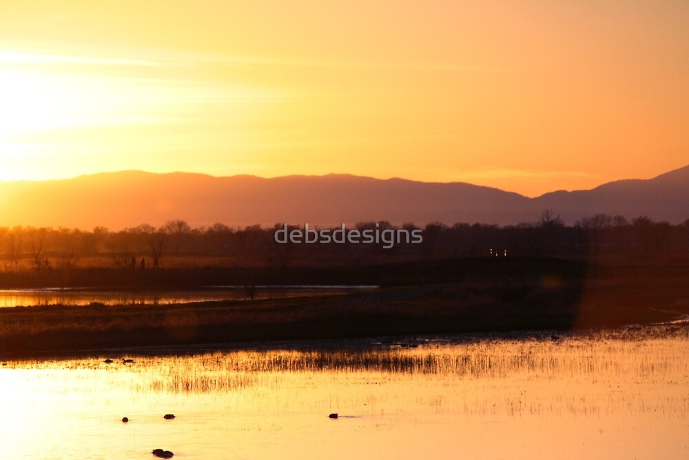 Sunset at the Bird Sanctuary II by debsdesigns