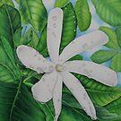 Tiare Tahiti by joeyartist