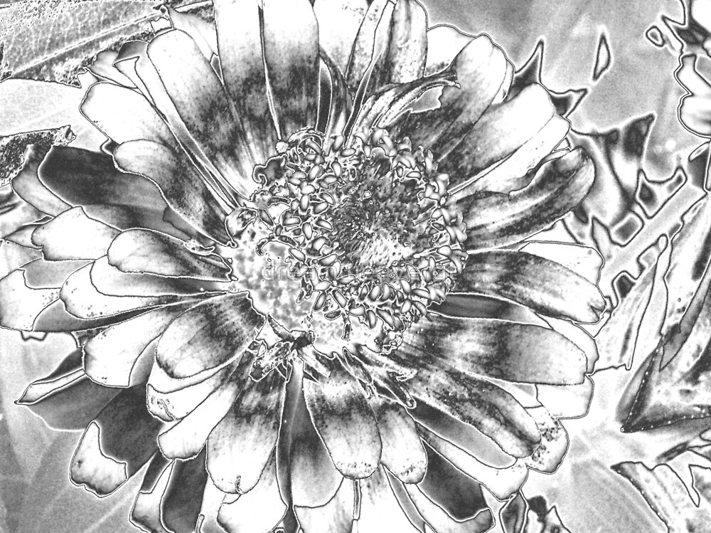 Chrome flower by dreamweavergt