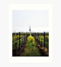 Winter Vineyards Art Print