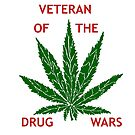 Veteran of the Drug Wars by redqueenself