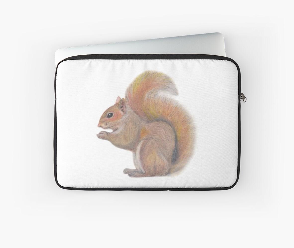 Squirrel by byrebecca