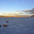 Coorong by STEPHANIE STENGEL | STELONATURE PHOTOGRAPHY