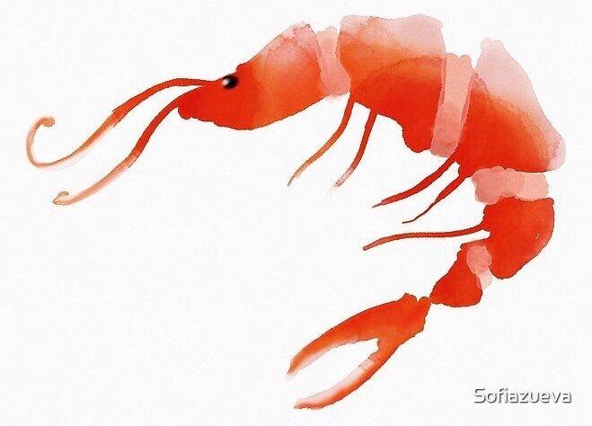 Shrimp by Sofiazueva