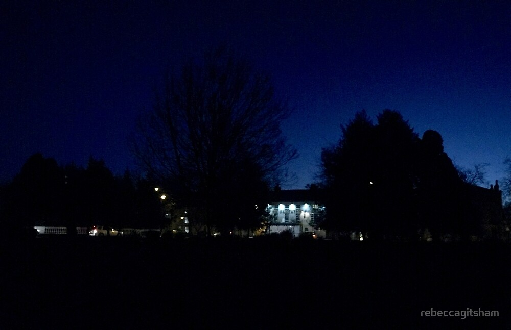 Night sky tree silhouettes  by rebeccagitsham