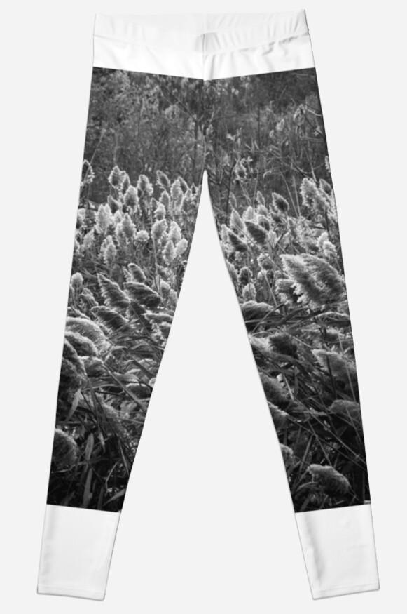 "Black and ""wheat"" photography by MattPokluda"