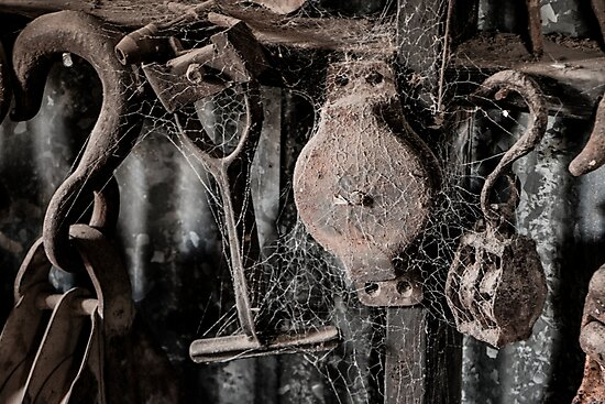 Forgotten Tools by TLWilsonPhoto