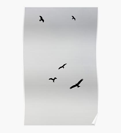 Flying.  Poster