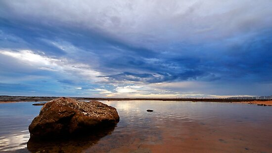 Rock Shelf at Narrabeen Headland by Nicholas Blackwell