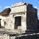 Ruins of Tulum by zumi