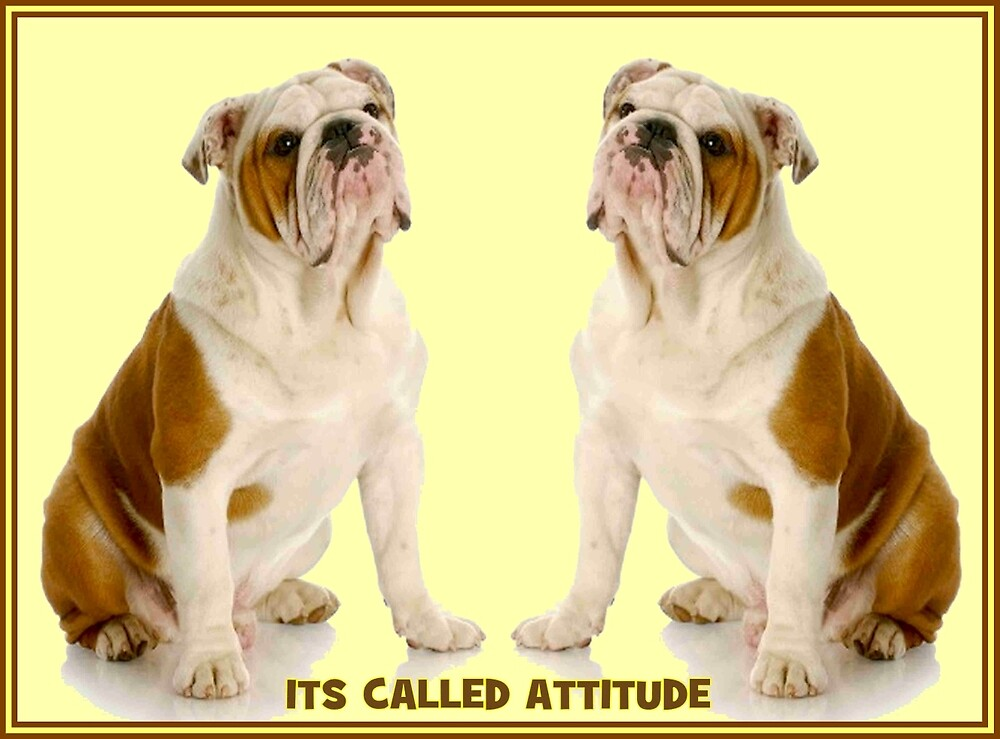 DOGS; Its Called Attitude Print by posterbobs