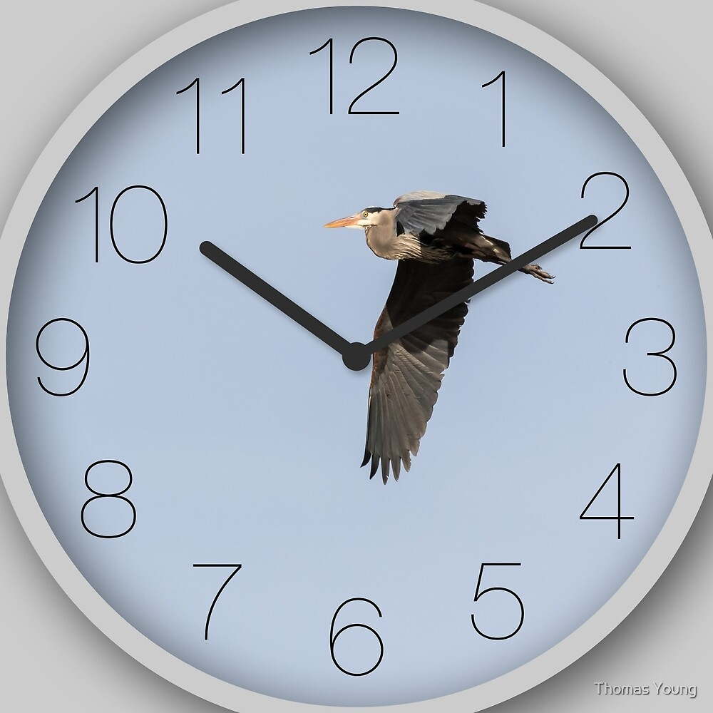 Great Blue Heron Clock-3  by Thomas Young