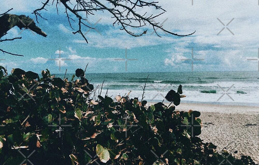 Paradise Beach by TheCreek