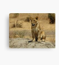 Learn to Hunt Canvas Print