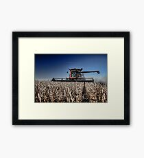 Soybean Harvest Framed Print